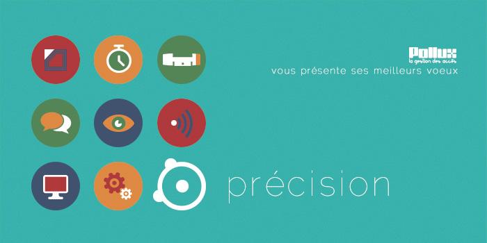 voeux pollux 2015 précision