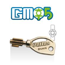Clé brevetée protégées à vie GMO5