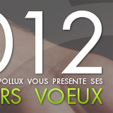 Pollux securite intuitive 2012